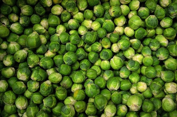 Little sprouts of anger?